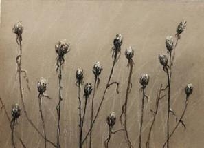 Диптих осенние травы