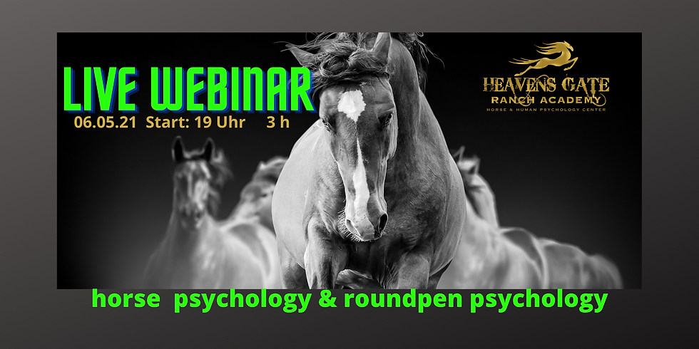 Live Webinar horse psychology & round pen psychology 06.05.21
