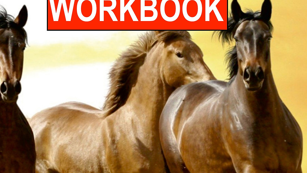 PDF Workbook Bodenarbeit / Download Datei