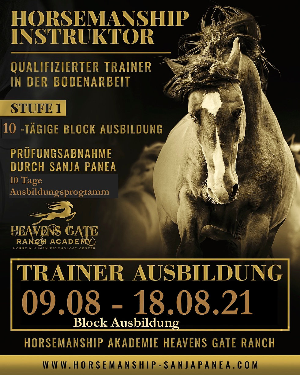 hgr trainer aug.21.jpeg