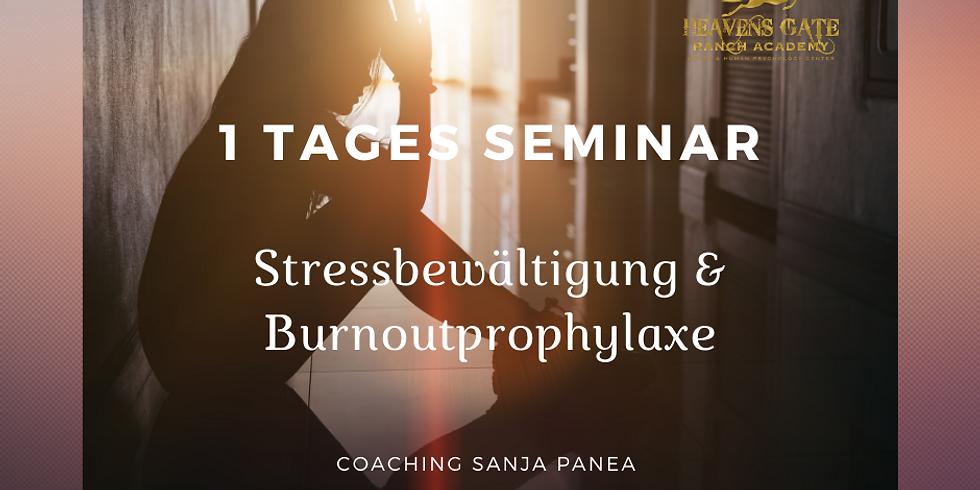 1 Tages Seminar Stressbewältigung & Burnoutprophylaxe 03.10.21