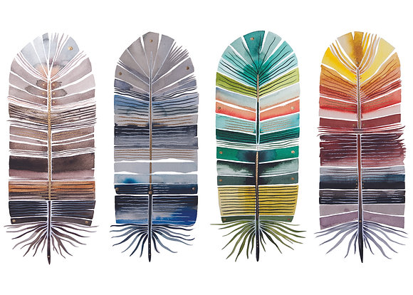 Element Feather Greeting Card