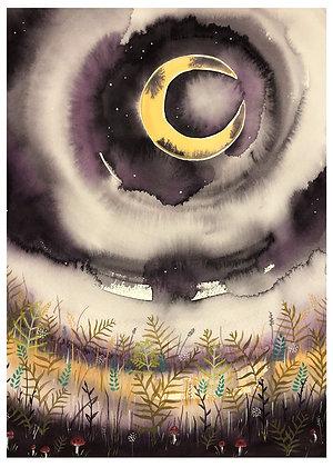 Moonlit Magic Greeting Card