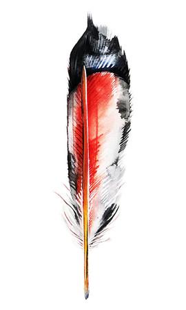 FeatherMe2.jpg