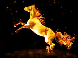 ló.jpg