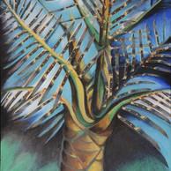 Hawi knife-tree