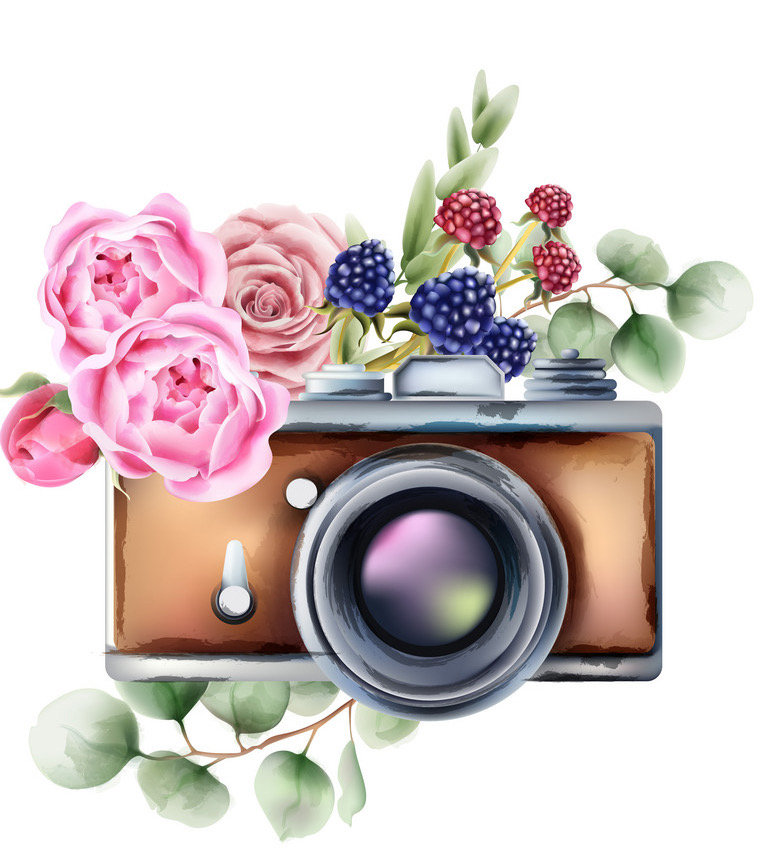 Photography Services and Rules