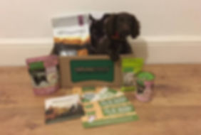 Puppy Welcome Box (002).jpeg