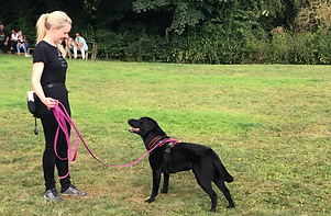 Trainer Sarah training with her own dog