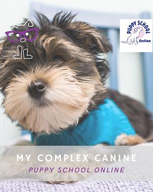 Puppy School Online Logo.png