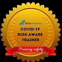 COVID-19_RISK_AWARE2.png