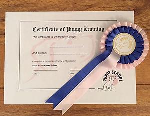 Puppy School Certificate & Rosette