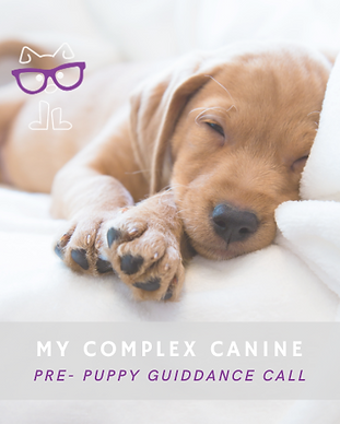 Pre Puppy Home Page.png