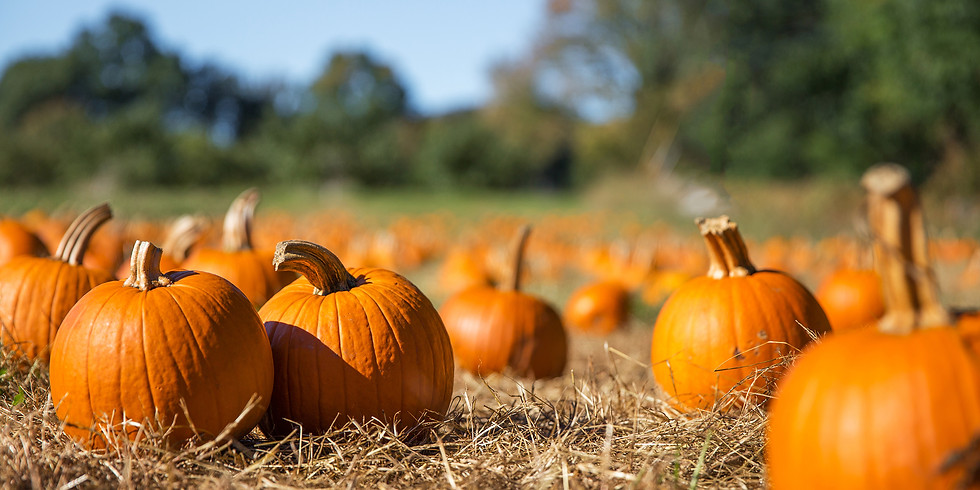 Bring your family and friends to Harvest Days at Butler's Orchard in October!
