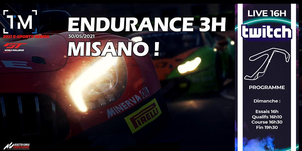 Telemetricks - ENDURANCE - Misano