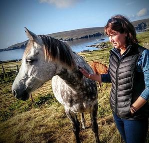 lisa's leatherworks leather repair shetland