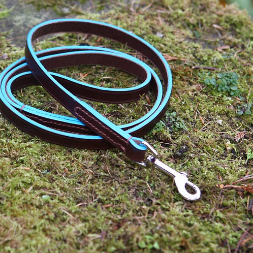Swivel snap lead with custom coloured edge