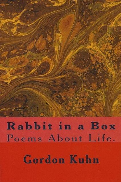 Rabbit in a Box