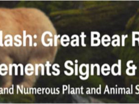 News Flash: Great Bear Rainforest Agreements Signed & Sealed