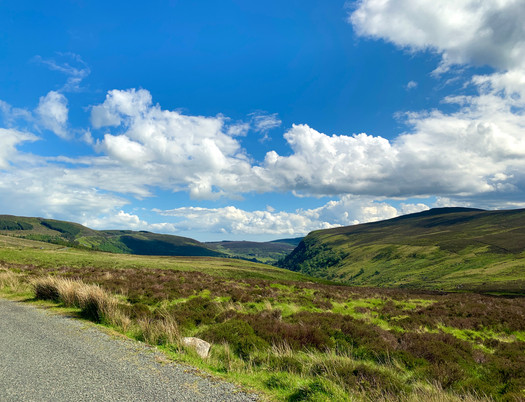 Just east of Sally Gap on R759, the view of the Wicklow Mountains is like an artist's canvas