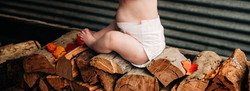 Wendy Stiles Photography Biodegradable Biodegradable Nappies Progeny logs leaves