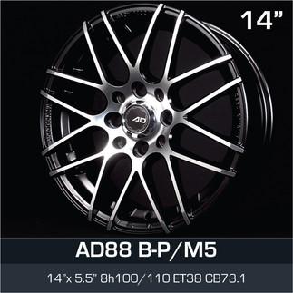 AD88_BPM5_1455H8.jpg
