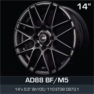 AD88_BFM5_1455H8.jpg