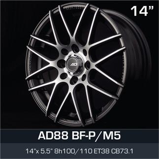 AD88_BFPM5_1455H8.jpg