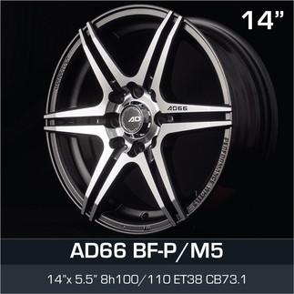 AD66_BFPM5_1455H8.jpg