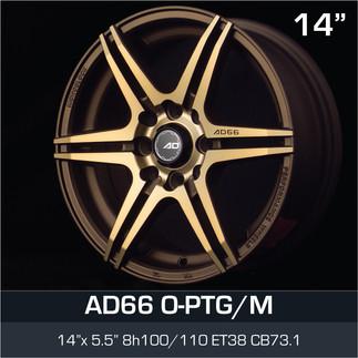 AD66_OPTGM_1455H8.jpg