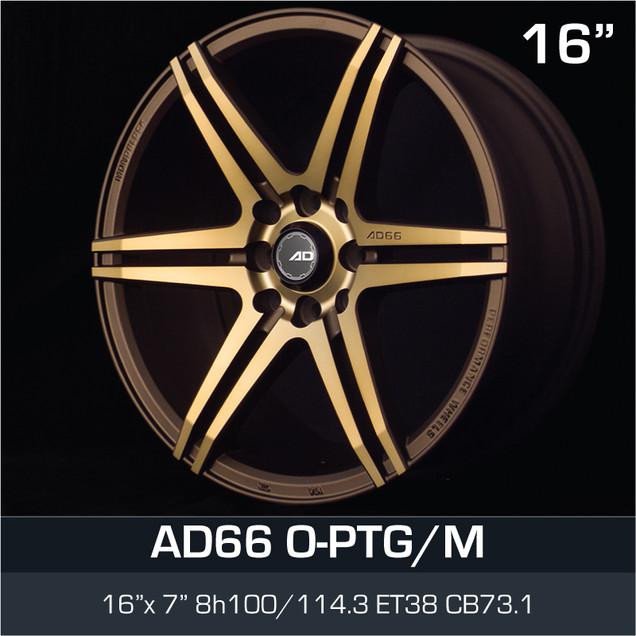 AD66_OPTGM_1670H8.jpg