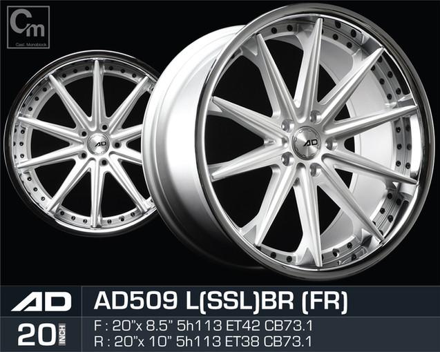 AD509_LSSLBR_208510H5113.jpg