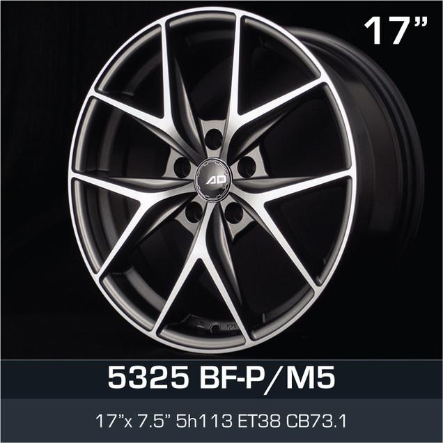 5325_BFPM5_1775H5.jpg
