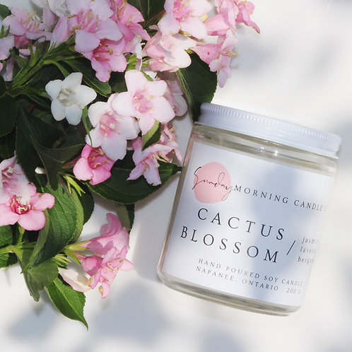 Cactus Blossom 8 Oz. Soy Candle