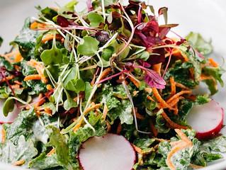 Kale, Chard & Micro-green salad