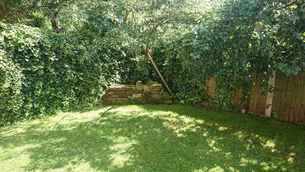 garden corner_resized.JPG