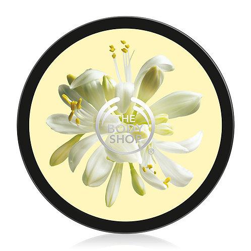 Body Shop Moringa Softening Body Butter 200ml
