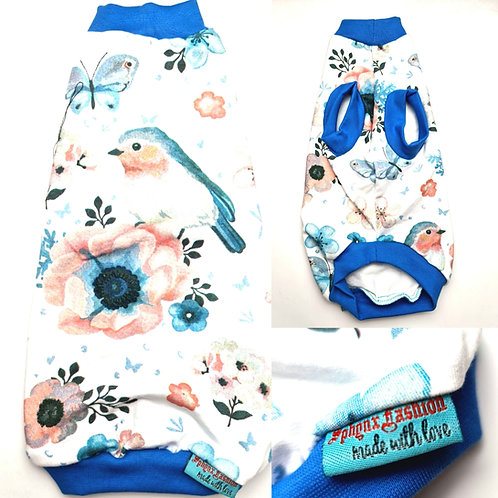 Spring Cotton Knit- Sphynx Cat Top