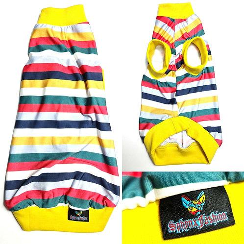 Stripes Summer Lycra - Sphynx Cat Top