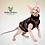 Thumbnail: Autumn Cotton Knit - Sphynx Cat Top