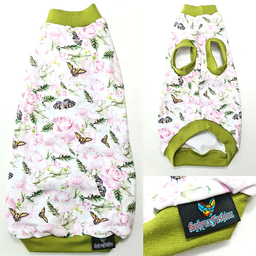 Green Butterfly Cotton Knit- Sphynx Cat Top
