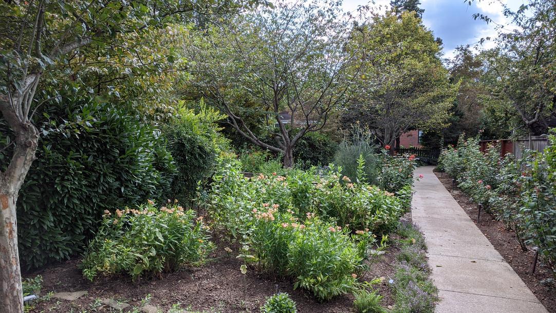 Main Garden Walkway
