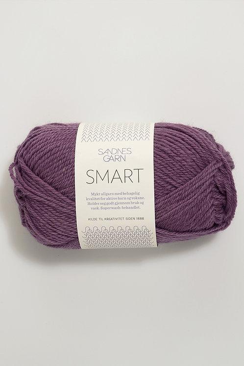 Smart 4853 (Ljung)