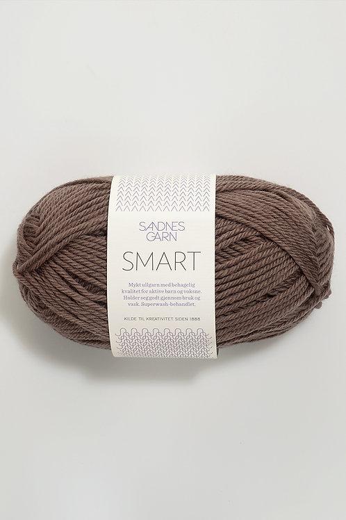 Smart 3161 (Mellanbrun)