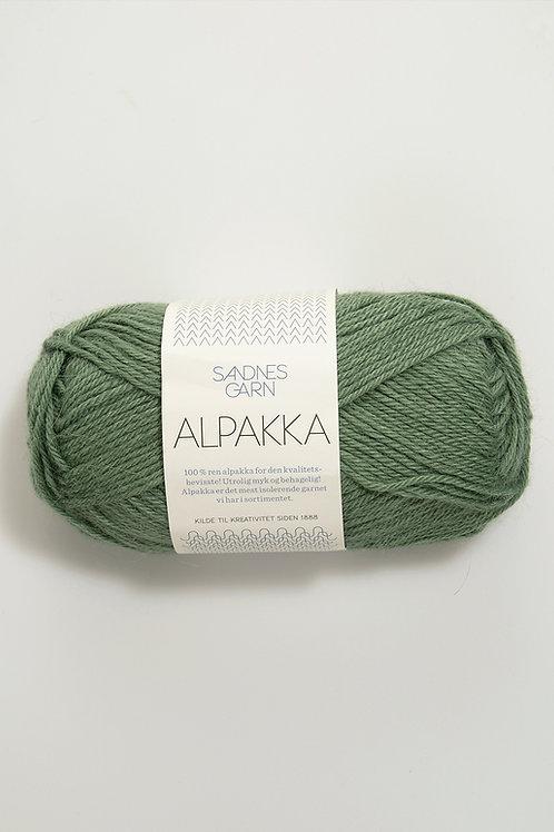 Alpakka 8543 (Ljust grön)