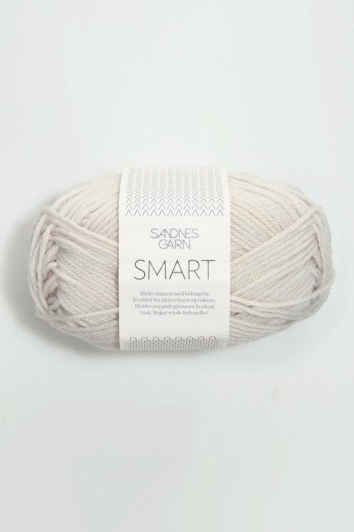 Smart 1015 (Kitt)