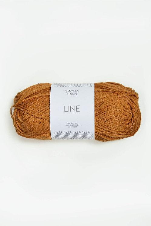 Line 2527 (Okra)