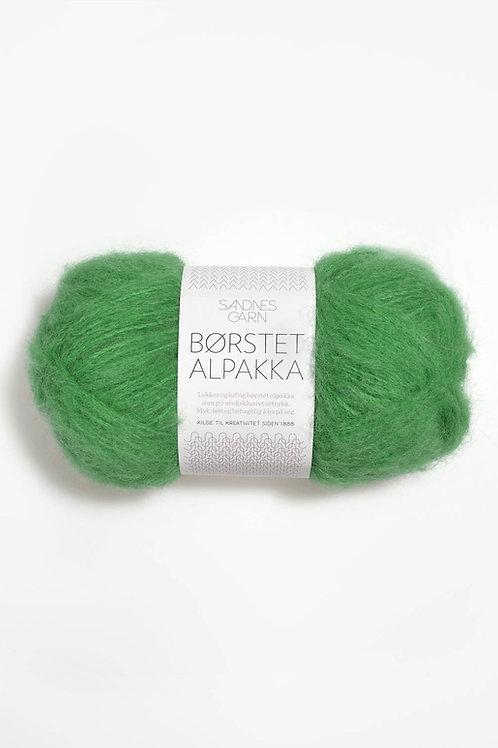 Borstad Alpakka 8026 (Vårgrön)