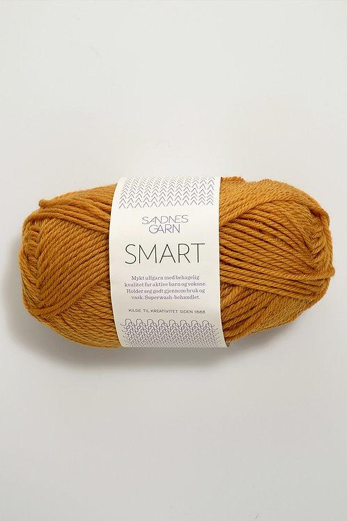 Smart 2527 (Ockra)
