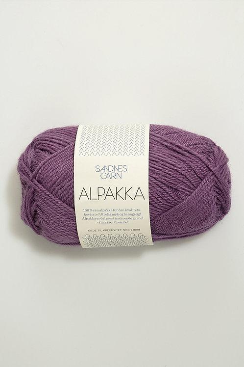 Alpakka 4853 (Ljung)